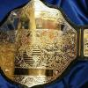big gold heavyweight championship belt shown blank and in stock. Customize the blank areas as shown in examples.