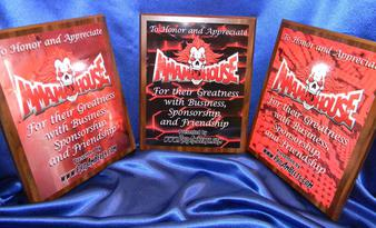 custom plaque medallions mma boxing wrestling trophy