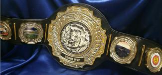 title belt fantasy football mvp award trophy title belt