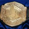 vicious gold with deep etching and engraving stock belt for corporate sales awards and unique awards with this championship belt, you can even use it for a fantasy football custom belt