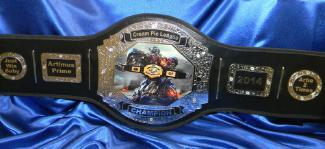 fantasy football title belt award custom trophy