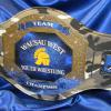 Youth wrestling championship belt was customized with our camouflage prophet belt. The blue and chrome help the logo stand out and this sparta school was really excited for this