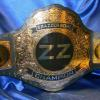 brazzers adult industry fantasy football custom championship title belt by ProAmBelts says it all... pretty cool!