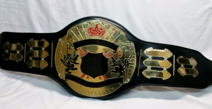 titan championship title belt with detachable nameplates heavyweight world unique award trophy
