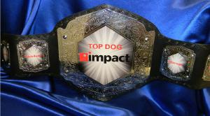 impact top dog custom championship title belt