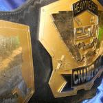 wrestling replica custom championship title belt world award tag team tna tne wwf wwe replica