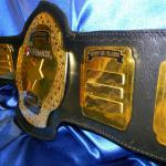 corporate custom championship title belt name plates layered gold brass heavy metal belt proambelts