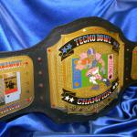 tecmo superbowl nintendo custom championship football belt ! The colors are perfect and  our fantasy football customers were huge fans of Tecmo Super Bowl and everyones favorite player was Bo Jackson!