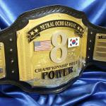 ocho fantasy football championship belt is an amazing title that will be around for years! Numerous name plates to engrave in the future, and also the stack layers of metal make this a big and heavy fantasy football championship belt from www.proambelts.com