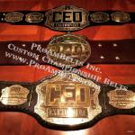 I LOVE GOLD ! That pretty much sums this up. CEO video game tournament specializes in fighting game tournaments and we sponsor this company and make some really badass belts for the video game convention via www.proambelts.com fully custom premier championship heavyweight belt awards