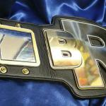 bro fantasy football title belt many plates and stack centerplate and special cut centerplate