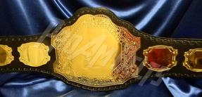 mma boxing championship title belt muy thai wrestling