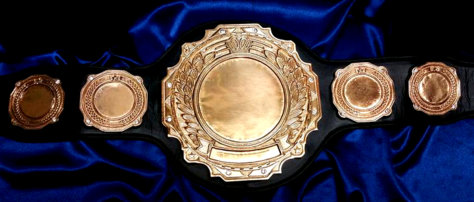 heavyweight tne tagteam title belt